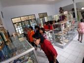 melihat koleksi museum msc di rdk purworejo-1