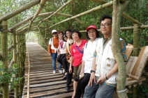 di tengah hutan mangrove